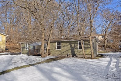 5204 Memory Trail, Mchenry, IL 60051 - #: 10269381