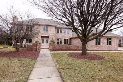 8737 Carriage Green Drive, Darien, IL 60561 - #: 10269499