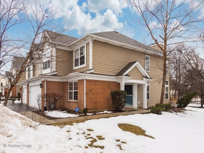 389 S Crown Court, Palatine, IL 60074 - #: 10270342