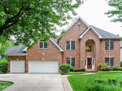 6334 Tennessee Avenue, Willowbrook, IL 60527 - #: 10271092