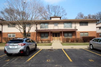 234 Washington Square UNIT C, Elk Grove Village, IL 60007 - #: 10271773