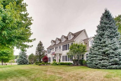 28385 W Harvest Glen Circle, Cary, IL 60013 - #: 10272672