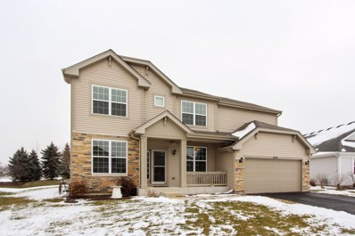 1219 Clearwater Drive, Pingree Grove, IL 60140 - #: 10273654
