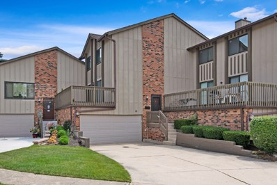 16 Lakeview Court, Willowbrook, IL 60527 - #: 10273909