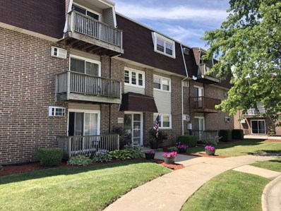 4309 W Park Lane Drive UNIT 1B, Alsip, IL 60803 - MLS#: 10274053