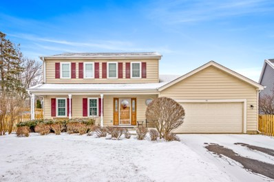 722 Cutters Mill Court, Schaumburg, IL 60194 - #: 10274566