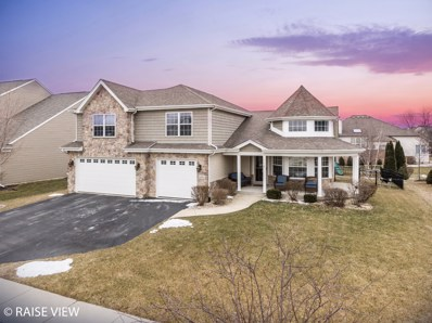 24951 Thornberry Drive, Plainfield, IL 60544 - #: 10274691