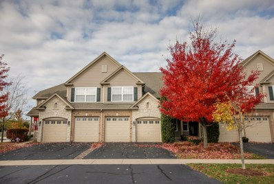 2027 Canyon Creek Drive UNIT 2027, Aurora, IL 60503 - #: 10274845