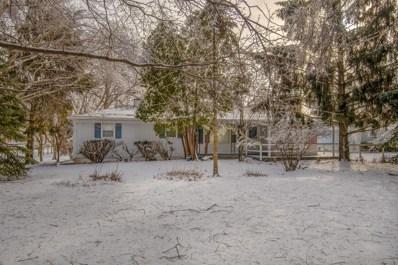 9529 S Carls Drive, Plainfield, IL 60585 - #: 10275483