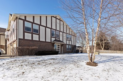 138 W Golf Road UNIT D, Libertyville, IL 60048 - #: 10275823