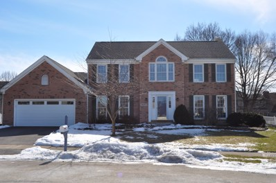1N205  Blue Jay Court, Carol Stream, IL 60188 - #: 10276577