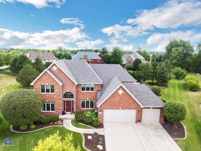 10422 Penny Court N, Frankfort, IL 60423 - MLS#: 10276750