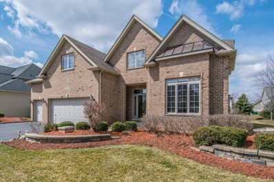 12800 Barrow Lane, Plainfield, IL 60585 - MLS#: 10277285