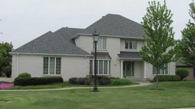 109 Carriage Drive, Morris, IL 60450 - #: 10277360