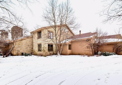 1 Fox Tail Court, Riverwoods, IL 60015 - #: 10277376