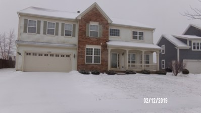 11193 Victoria Lane, Huntley, IL 60142 - #: 10277876