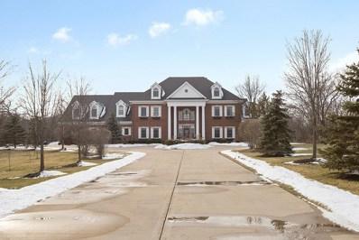 19828 S Schoolhouse Road, New Lenox, IL 60451 - #: 10278041