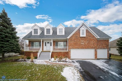 24461 Brooklands Lane, Plainfield, IL 60585 - MLS#: 10278273