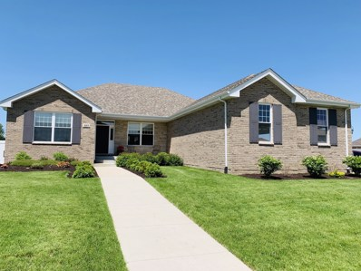 1015 Meadow Path, Manteno, IL 60950 - MLS#: 10278824