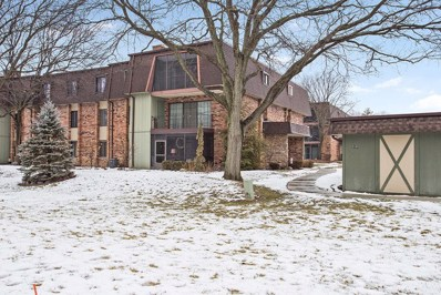 9197 North Road UNIT E, Palos Hills, IL 60465 - #: 10279160