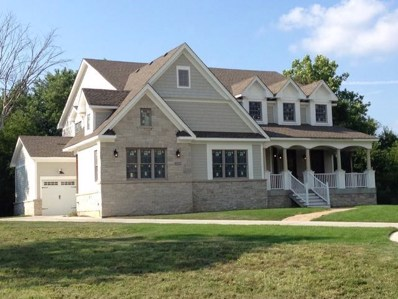 1236 Arnold (Lot#6) Court, Downers Grove, IL 60516 - #: 10280025