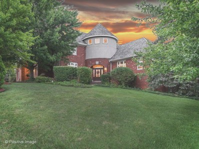 11938 Timber Edge Drive, Orland Park, IL 60467 - #: 10280560