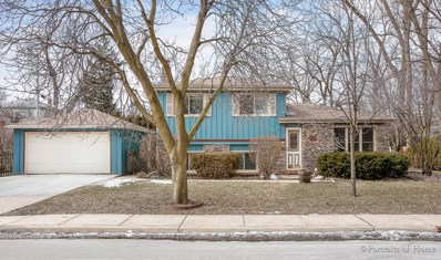 818 Pleasant Avenue, Glen Ellyn, IL 60137 - #: 10281387