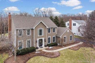 3335 Woods Creek Lane, Algonquin, IL 60102 - #: 10281494