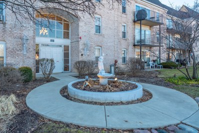 5001 Carriageway Drive UNIT 305, Rolling Meadows, IL 60008 - #: 10281610