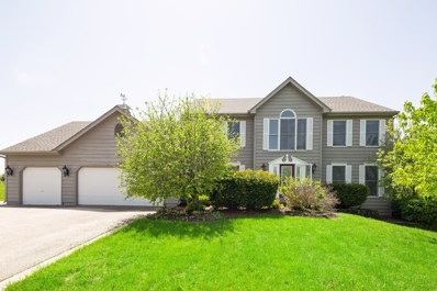 3015 Woods Creek Lane, Algonquin, IL 60102 - #: 10281794