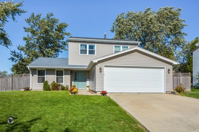 20126 Pine Hill Road, Frankfort, IL 60423 - #: 10290025