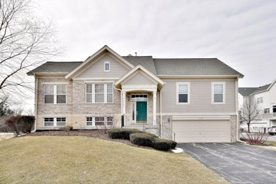 5500 Cambridge Way, Hanover Park, IL 60133 - #: 10290403