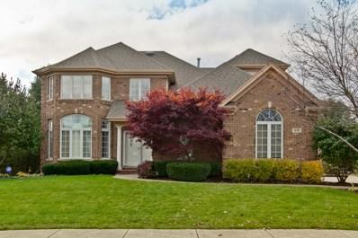 1438 Butler Court, Vernon Hills, IL 60061 - #: 10290609