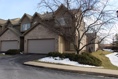 590 Silver Aspen Circle, Crystal Lake, IL 60014 - #: 10291080