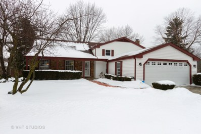 1129 Garfield Avenue, Libertyville, IL 60048 - #: 10291084