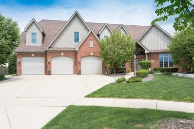 10834 Moose Lane, Orland Park, IL 60467 - #: 10291277