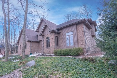 226 Locust Lane, New Lenox, IL 60451 - #: 10291443