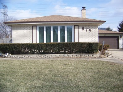 875 Love Street, Elk Grove Village, IL 60007 - #: 10291550