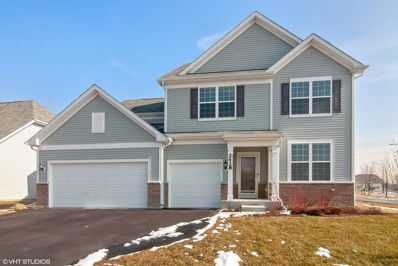 2428 Basin Trail Lane, Naperville, IL 60563 - #: 10292345