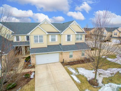 224 Westminster Drive, Bloomingdale, IL 60108 - #: 10292349