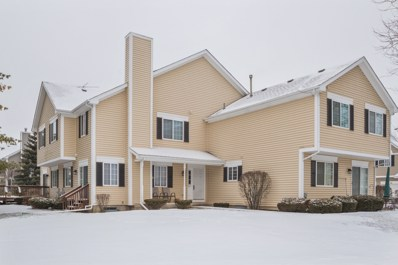 607 Silver Creek Road UNIT 11B, Woodstock, IL 60098 - #: 10292525