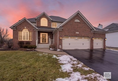 2655 Wild Timothy Road, Naperville, IL 60564 - #: 10292749