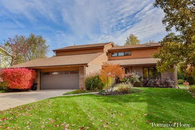 5933 Hillcrest Court, Downers Grove, IL 60516 - #: 10292936
