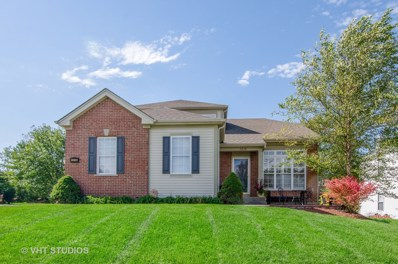 1218 Water Stone Circle, Wauconda, IL 60084 - #: 10293294