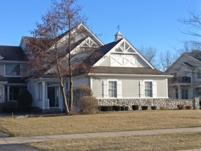 21317 Windy Hill Drive, Frankfort, IL 60423 - #: 10293389