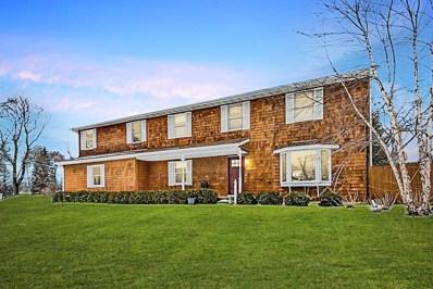 220 Birch Avenue, Lake Bluff, IL 60044 - #: 10294041