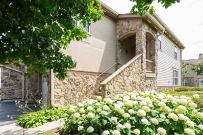 1822 Crenshaw Circle UNIT 1822, Vernon Hills, IL 60061 - #: 10294080