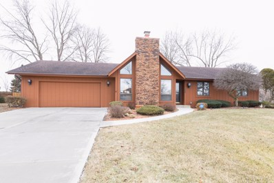 3121 E Bending Creek Trail, Crete, IL 60417 - MLS#: 10294117