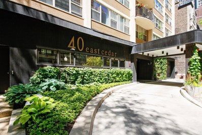 40 E Cedar Street UNIT 7A, Chicago, IL 60611 - #: 10294223