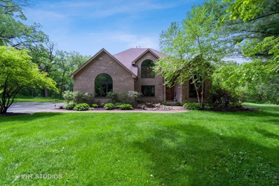 1129 W Ringwood Road, Johnsburg, IL 60051 - #: 10294509